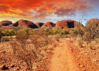 Three Reason To Choose Tour Operators For Outdoor Excursion